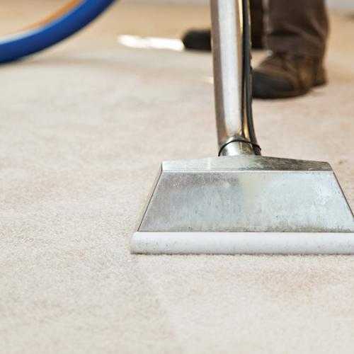 Skillfull Carpet Cleaning technician