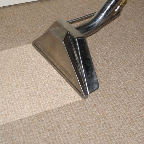 Same Day Carpet Cleaning Sanjose