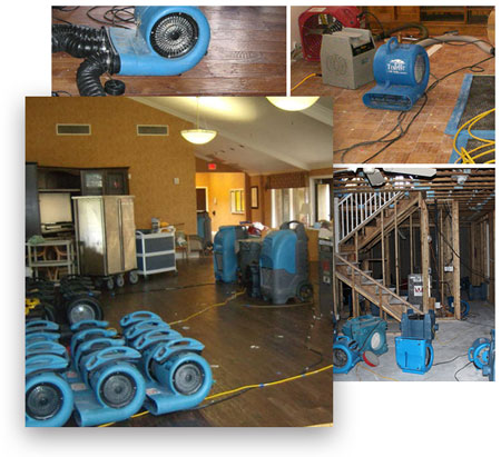 Sanjose water Damage cleaning