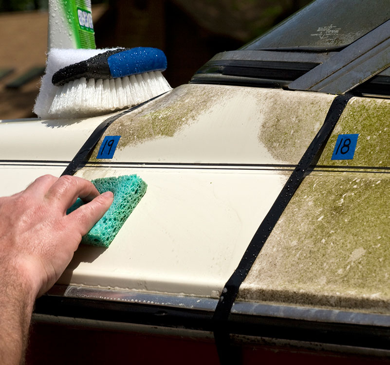 Cleaning services san jose